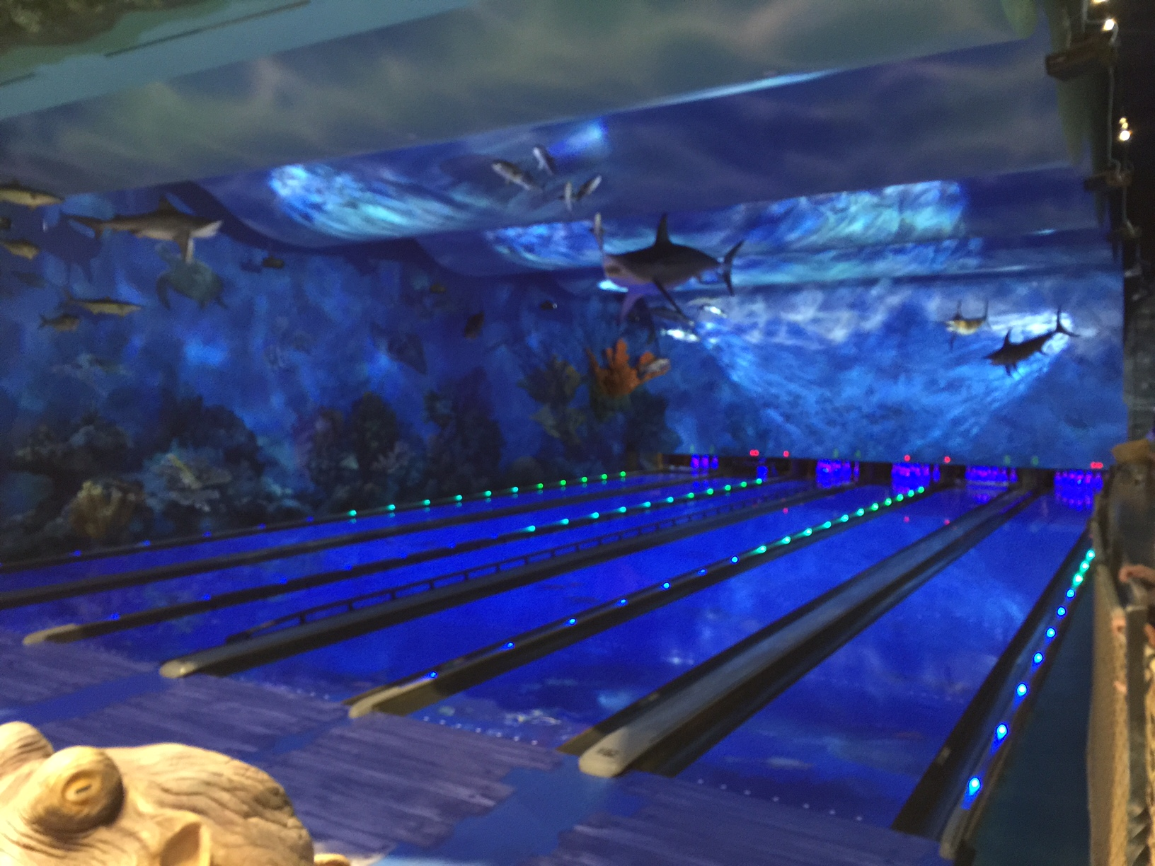 Bass pro shops round rock grand opening bowling alley for Fish bowl rocks