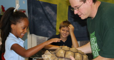 Austin Reptile Show at Safari Champ