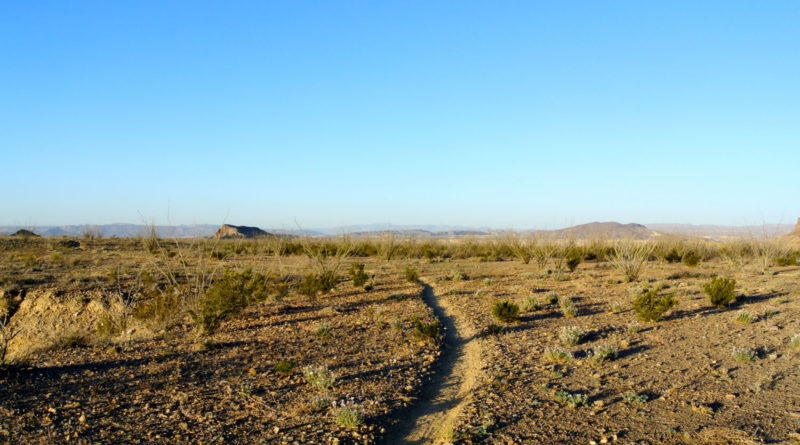 Free REI Find Your Park Class: Big Bend