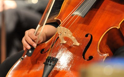 Free Williamson County Symphony Concerts in the Park