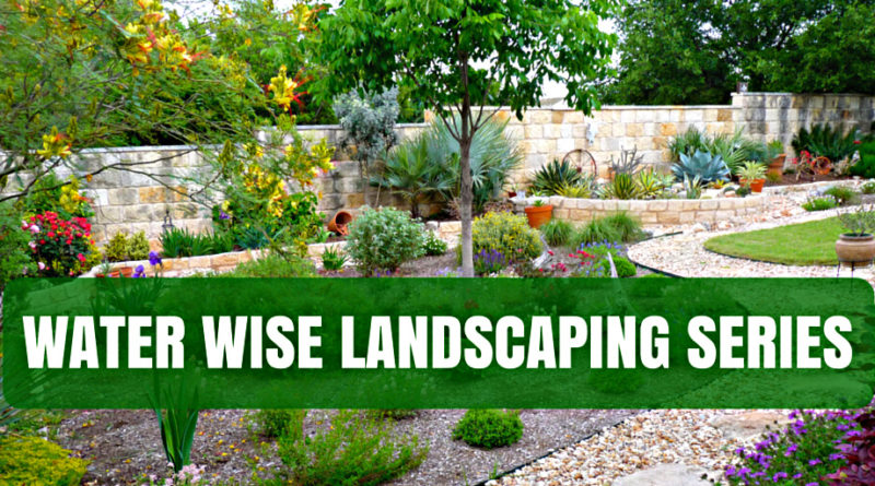 Water Wise Landscaping Series