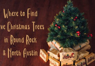Where to Find Live Christmas Trees in Round Rock & North Austin