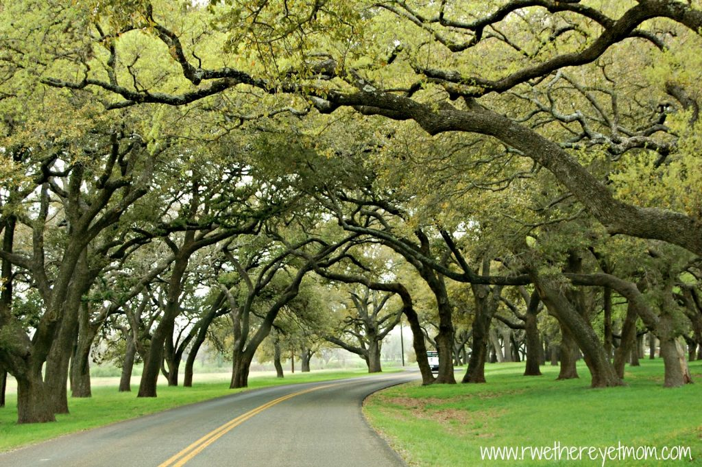 10 Fall Getaways from Round Rock - LBJ Ranch