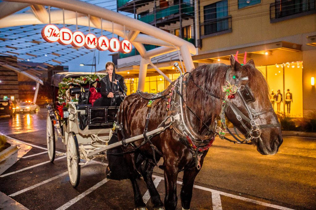 Holiday Events at The Domain