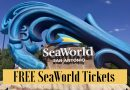 Free SeaWorld Tickets for Preschoolers, Teachers & Active Military