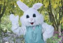 Safe & Free Easter Bunny Photos at Bass Pro Shops