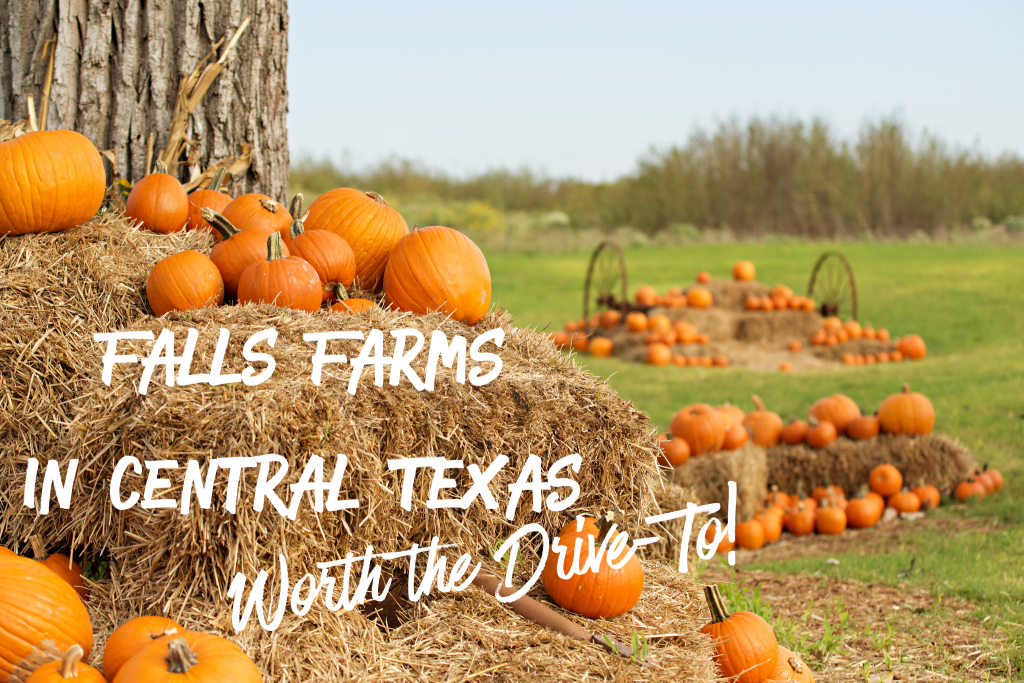 Fall Farms in Central Texas