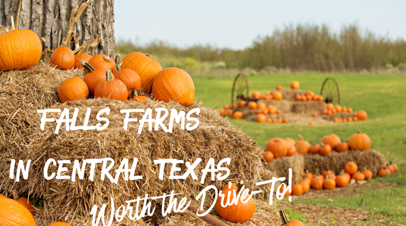 6 Fall Farms in Central Texas Worth the Drive-to!