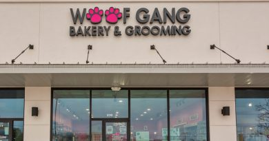 Let Your Dog Shop at Woofgang Bakery & Grooming